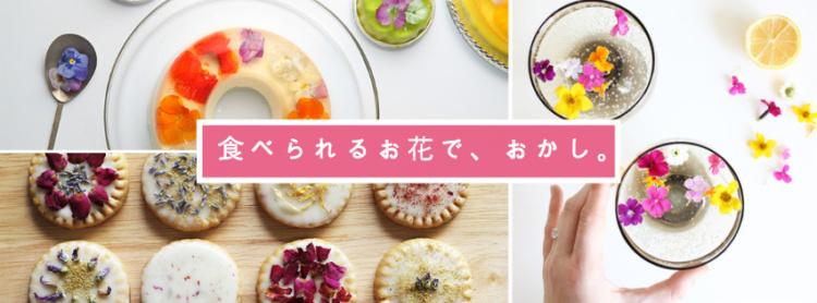 食べられるお花ワークショップin東武練馬
