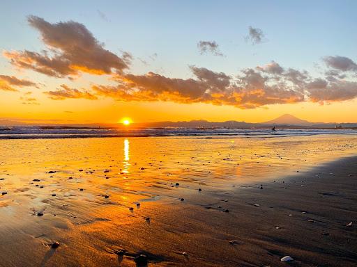 (JP) 自分の可能性を広げてくれる場所-江ノ島うみがめ舎での生活-